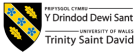 University of Wales Trinity Saint David - project organiser